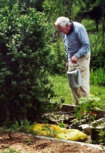 Dad in his garden.