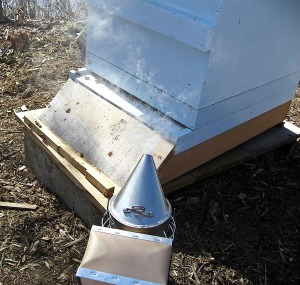 Smoking the bees prior to opening the hive.