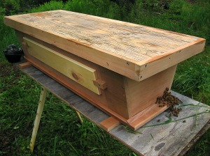 The new Top Bar Hive that Ray built is a beauty.
