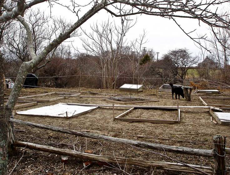 Laying out the vegetable garden 5 years ago