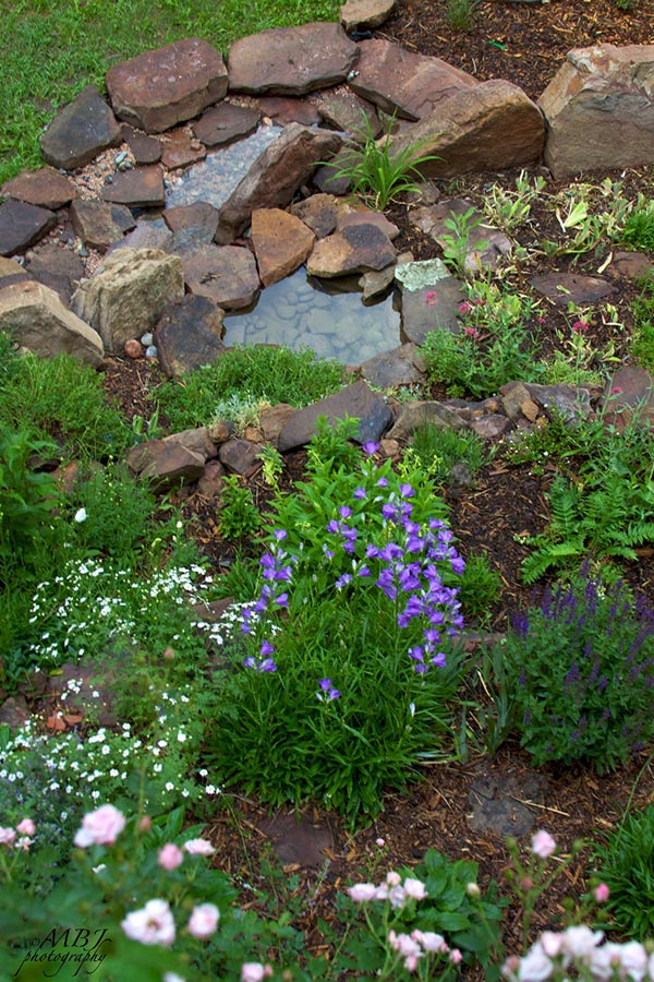 How to build a waterfall pond bees and chicks for Digging a garden pond